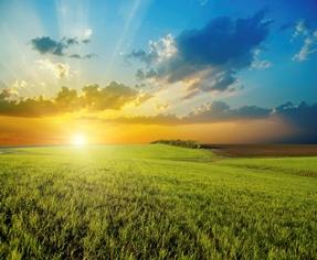 Sun rising over farm